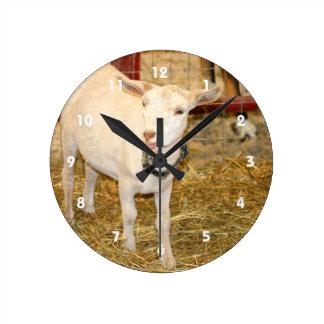 Boca doeling de la cabra de Saanen abierta Reloj