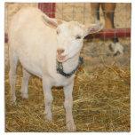 Boca doeling de la cabra de Saanen abierta Servilletas De Papel