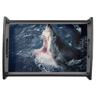 Boca elevada del tiburón abierta bandejas