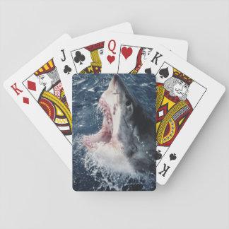 Boca elevada del tiburón abierta barajas de cartas