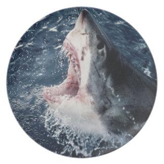 Boca elevada del tiburón abierta platos para fiestas