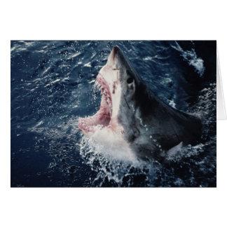 Boca elevada del tiburón abierta tarjeta de felicitación