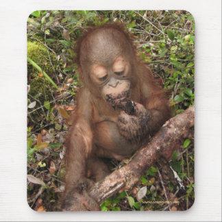 Boca sucia del orangután de George Tapete De Ratones