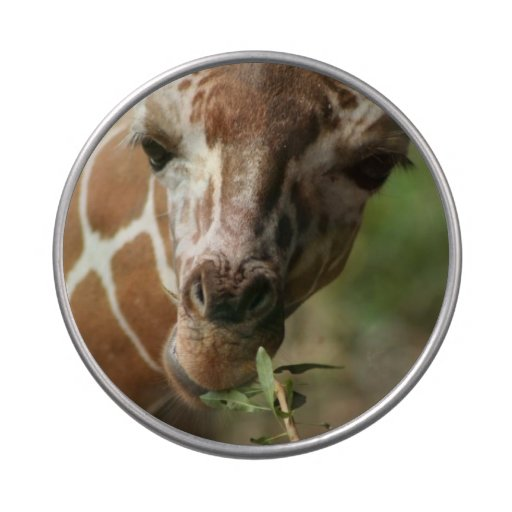 Bocado de la jirafa frascos de caramelos