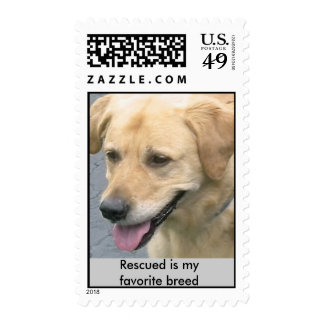 Bochelli's Own Postage Stamps