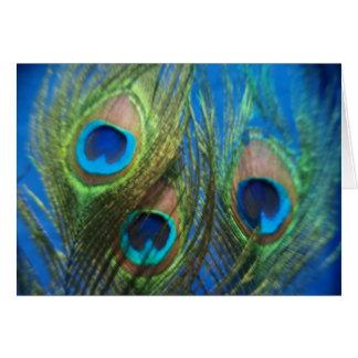 Boda azul de la pluma del pavo real tarjetas