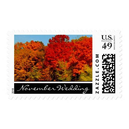 Boda de noviembre sello