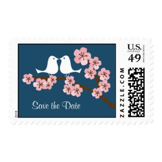 Boda del jardín de la flor de cerezo (marina de envio