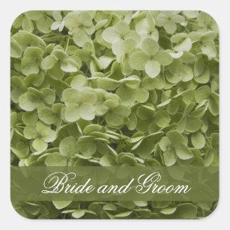 Boda floral del Hydrangea verde de Annabelle Pegatina Cuadrada
