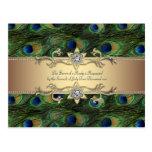 Boda indio real esmeralda del pavo real del oro ve tarjetas postales