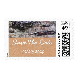 Boda personalizado foto de la corteza de árbol sello