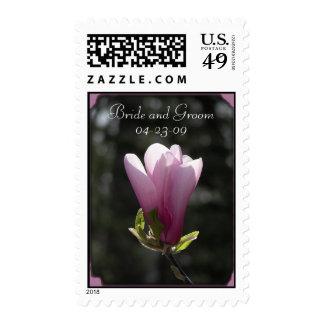 Boda rosado de la magnolia envio
