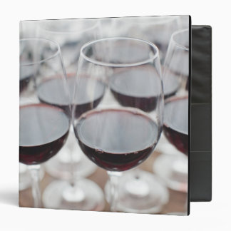 Bodega Marques de Riscal winery, wine tasting 3 Binder