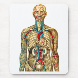 body678.png mouse pad
