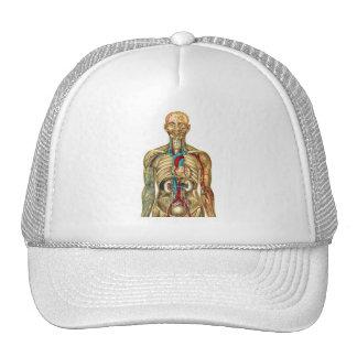 body678.png trucker hat