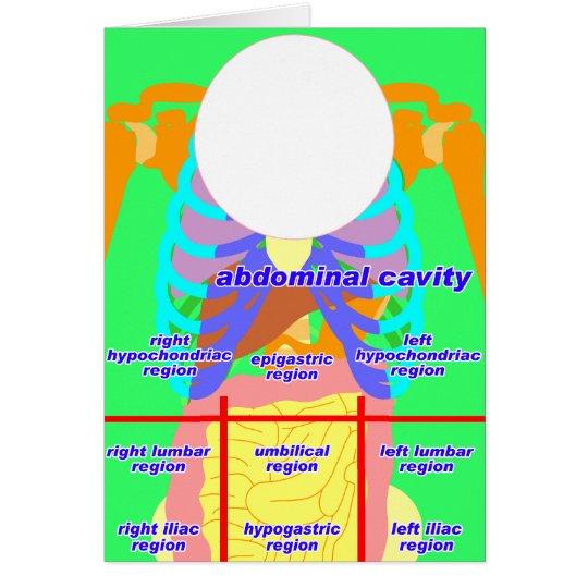body_abdomina_color2 card