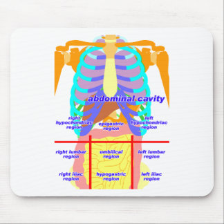 body_abdomina_color2 mouse pad