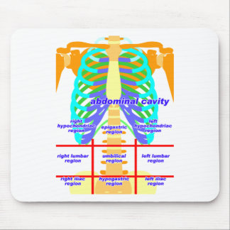 body_abdomina_color mouse pad