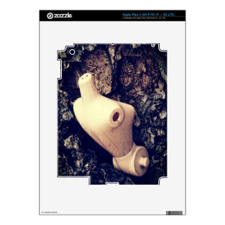 body in the woods skin for iPad 3