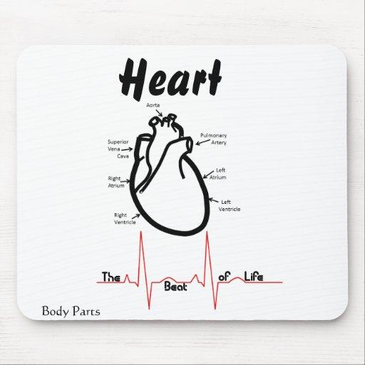 Body Parts Human Heart Mouse Pad Zazzle