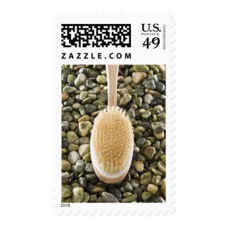 Body scrub brush on rocks stamps