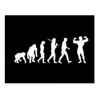 Bodybuilding Bodybuilders evolution gifts & tees Postcard