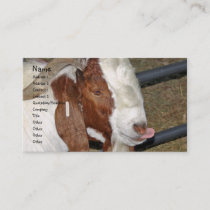 Boer Goat Billy Sticking His Tongue Out Business Card