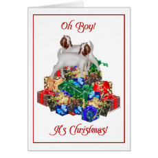 Boer Goat Christmas Card
