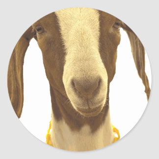 Boer Goat Classic Round Sticker