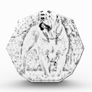 Boerbel Acrylic Award