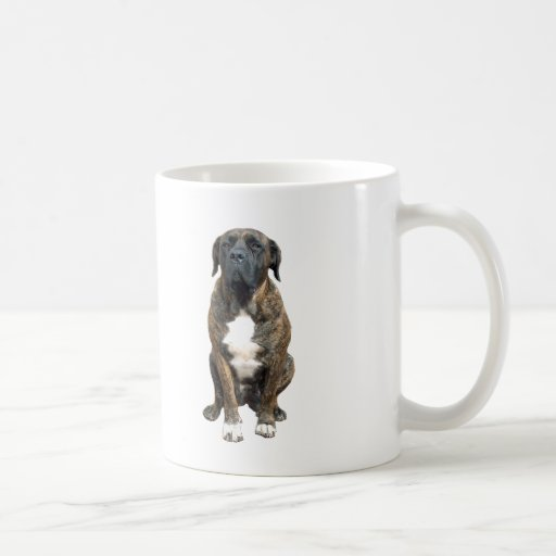 Boerboel (a) taza de café