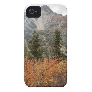 BOFR Boreal Friends iPhone 4 Case