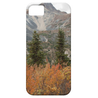 BOFR Boreal Friends iPhone SE/5/5s Case
