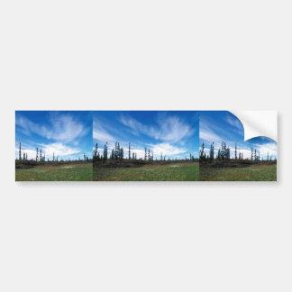 Bog and Sporadic Spruce Bumper Sticker