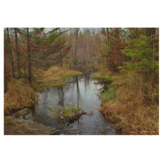 Bog Brook Later Autumn 2015 Wood Poster