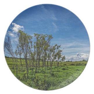 Bog Forest at Big Meadows Melamine Plate
