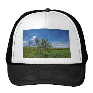 Bog Forest at Big Meadows Trucker Hat