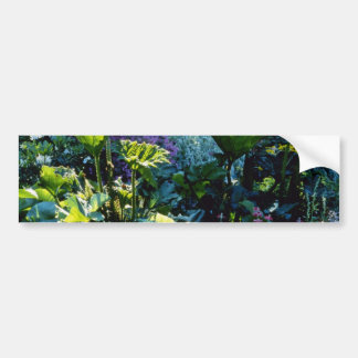 Bog Plants flowers Bumper Sticker