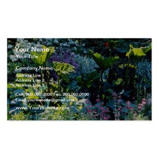 Bog Plants flowers Business Card Templates