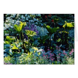 Bog Plants flowers Card