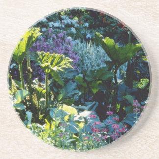 Bog Plants flowers Beverage Coaster