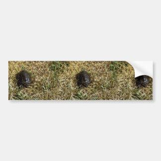 Bog turtle bumper stickers