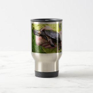 Bog turtle with affixed radio transmitter coffee mugs