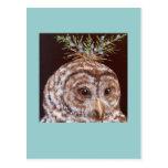 Bogart (barred owl) postcard