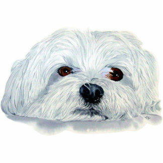 Bogart the Maltese Sculpture Standing Photo Sculpture