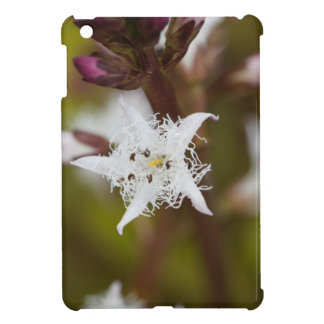 Bogbean (Menyanthes trifoliata) iPad Mini Cover