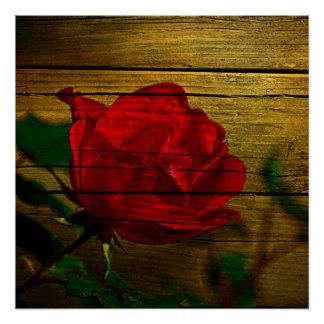 Bohemian barn woodgrain Valentine's day Red Rose Poster