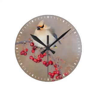 Bohemian waxwing in winter, Canada Round Clock
