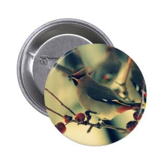 Bohemian Waxwing Pinback Button