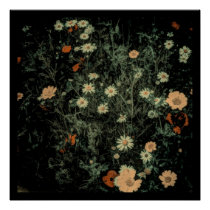 bohemian white daisy wildflower black floral poster